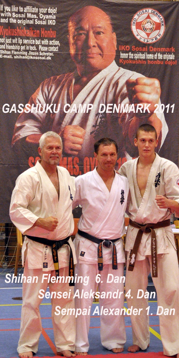 Александр Анфёров проводит сборы по карате в Дании